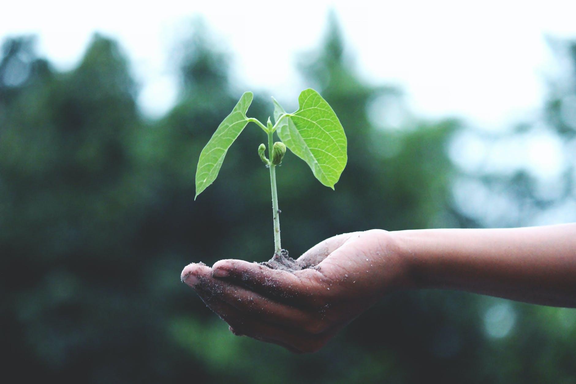 Webinar 44 Minuten – Nachhaltigkeit in der Supply Chain